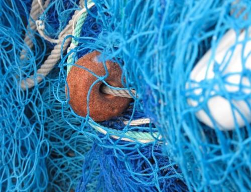 Filets de pêche et déchets en mer, une association marseillaise a des solutions