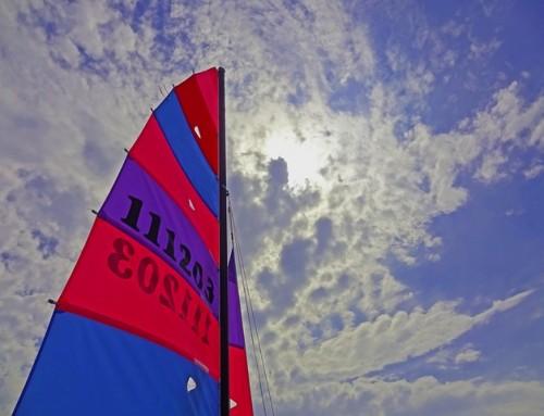 Voile – Sail GP : ça va décoiffer à Marseille avec les géants des mers