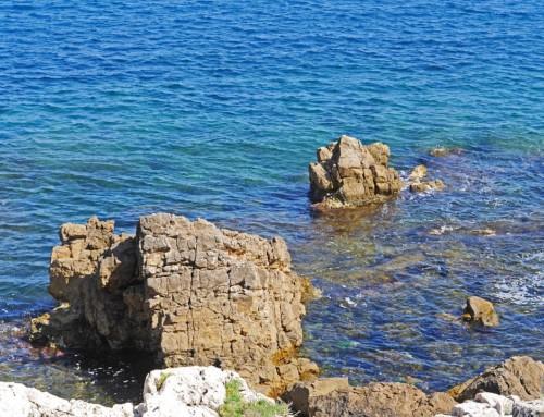 Marseille : la réalité virtuelle pour découvrir les fonds marins