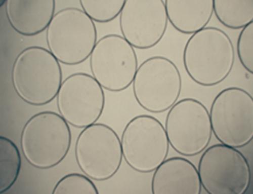 Gem'innov prend de l'avance grâce à ses microcapsules biodégradables