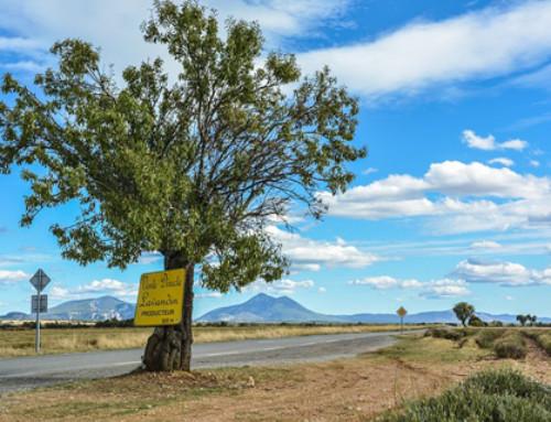 Programme européen Marittimo : un soutien au tourisme durable dans la région Provence Alpes Côte d'Azur