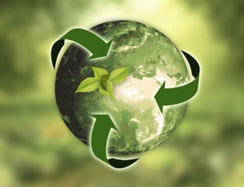 Zei : la plateforme qui booste la performance environnementale des entreprises