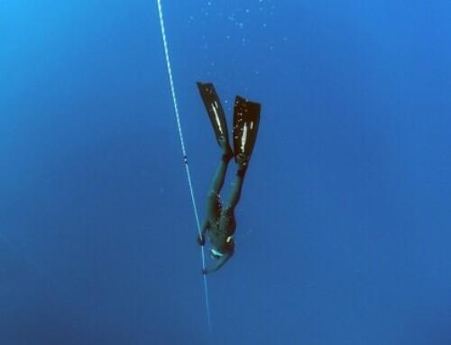 Le Marseillais Arnaud Jerald sacré champion du monde de plongée en apnée